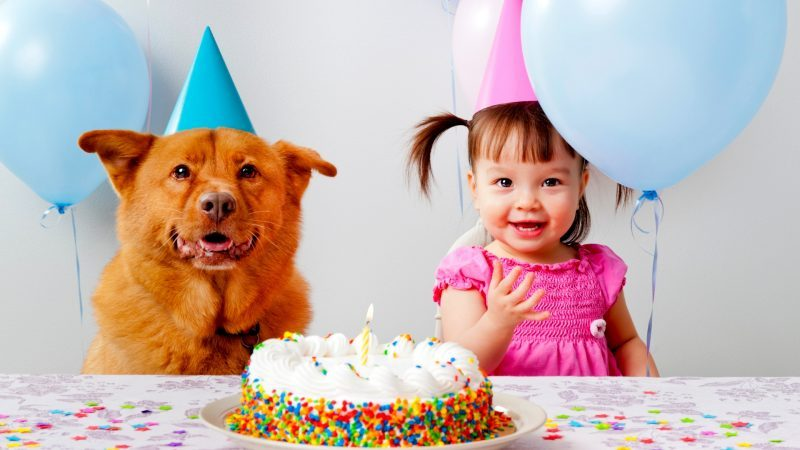Design Your Photo - Do Not Let the Birthday Party Distract You