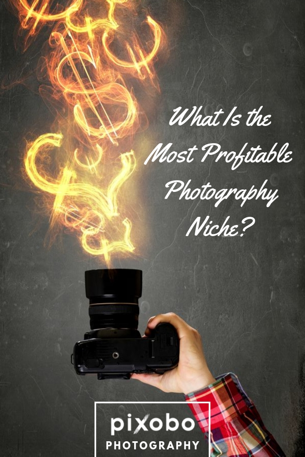 What Is the Most Profitable Photography Niche?