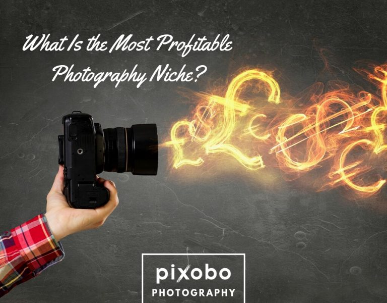 What Is the Most Profitable Photography Niche_