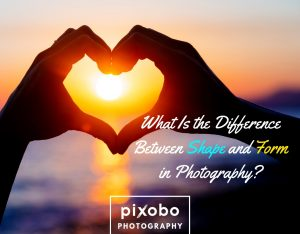What Is The Difference Between Shape And Form In Photography