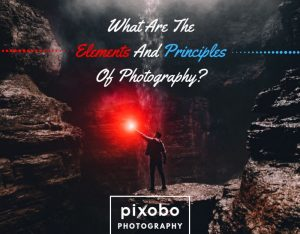 What Are The Elements And Principles Of Photography