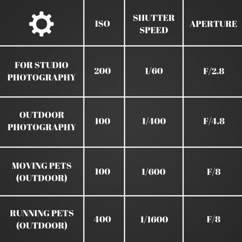 Camera settings for pet photography