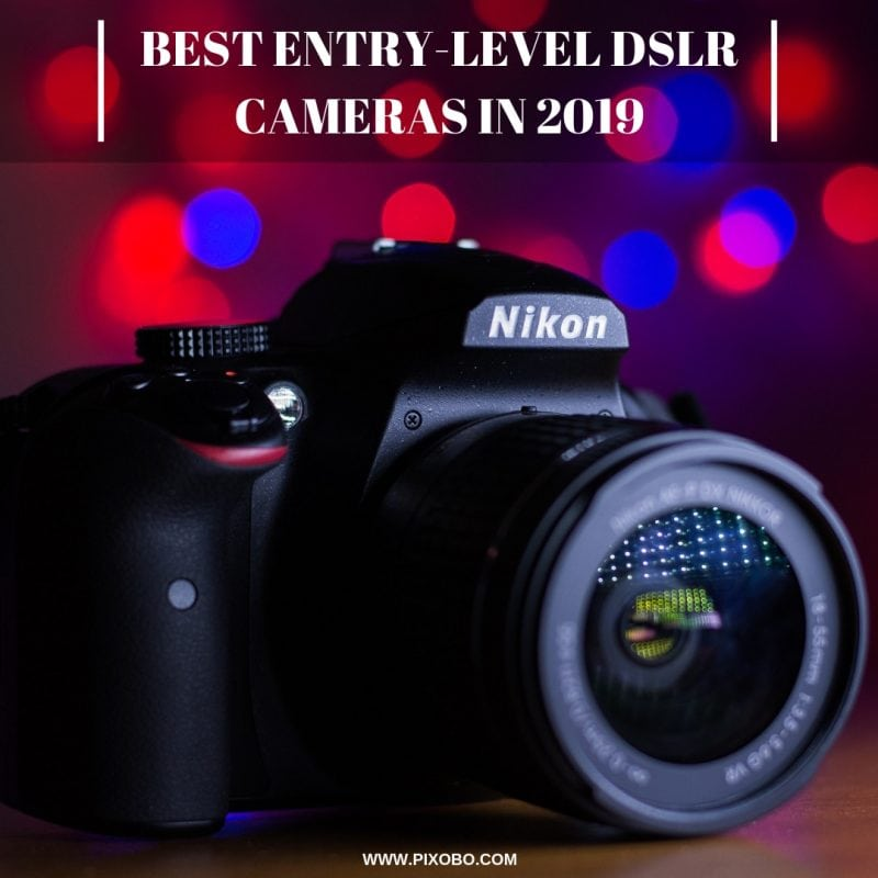 Best Entry-Level DSLR Cameras in 2019