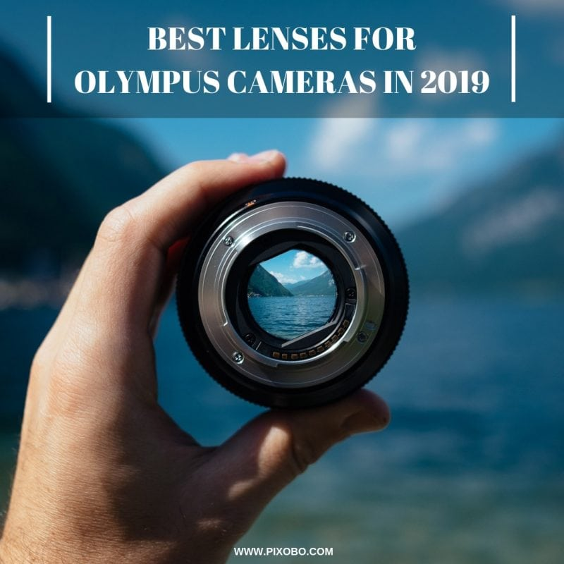 Best Lenses for Olympus Cameras in 2019