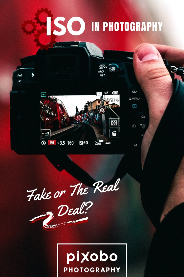 ISO in Photography: Fake or the Real Deal?