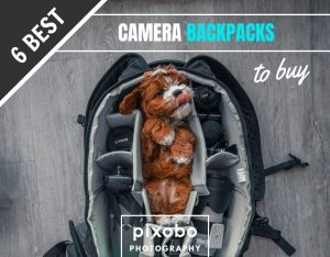 6 Best Photography Camera Backpacks