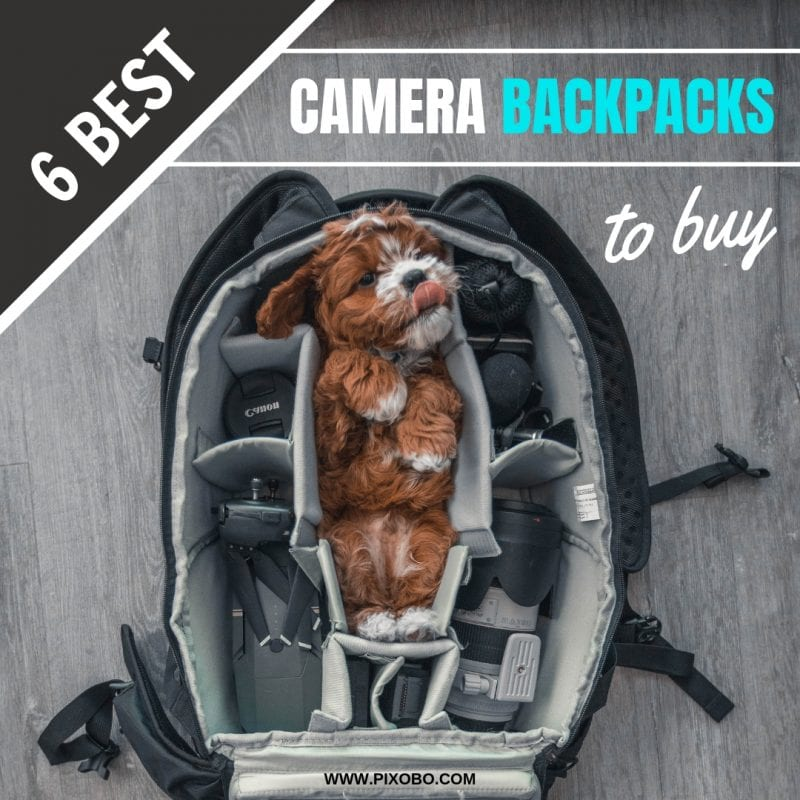 6 Best Photography Camera Backpacks to Buy