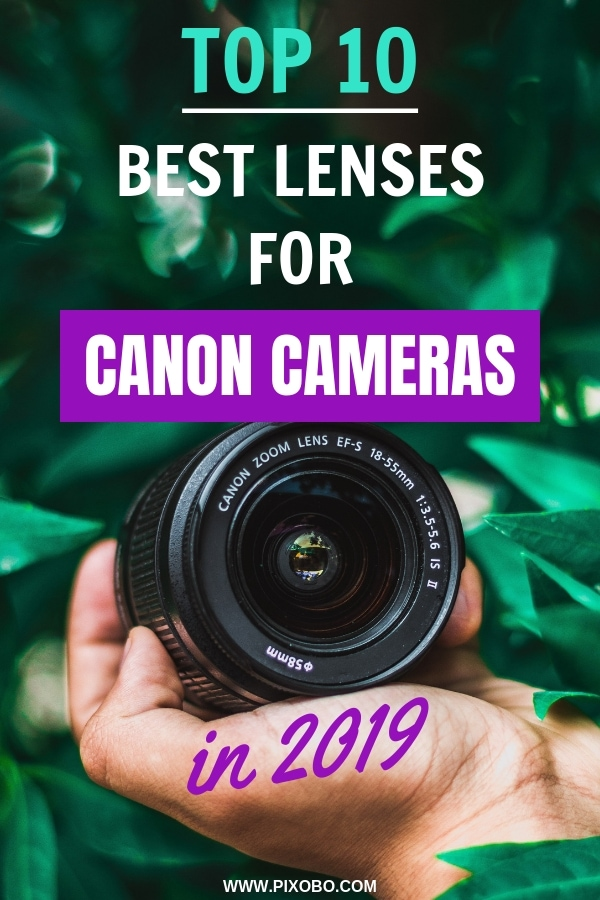 Do you want to know more about Canon cameras lenses? Can you use any Canon lens on any Canon Camera? In this blog post, you can find out the top 10 best lenses for Canon cameras in 2019. Find out which Canon lenses you should consider buying and much more information related to Canon camera lenses. #cameralenses #canonlens #lensesforcanon #canonlenses