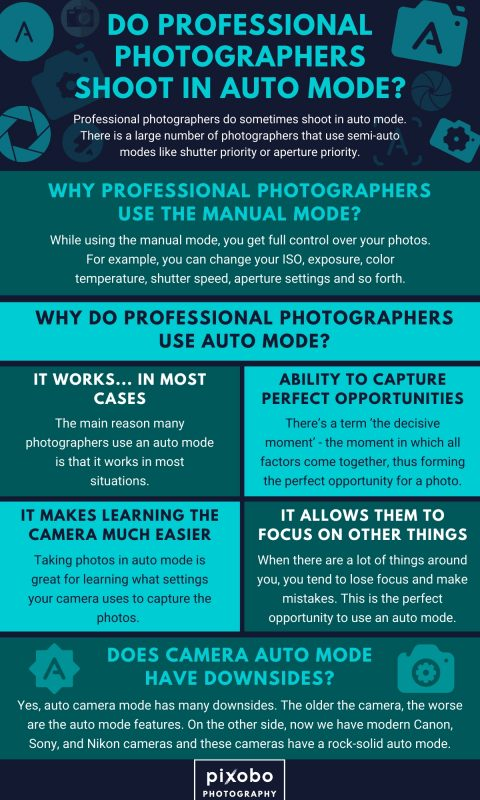 Do Professional Photographers Shoot in Auto Mode_1