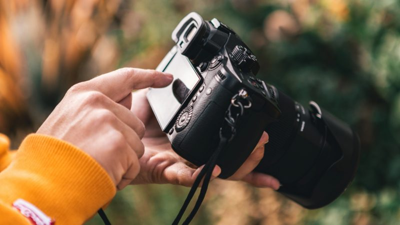 What Factors Have the Highest-Impact on the Quality of the Photo