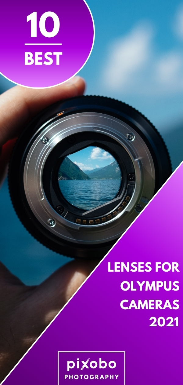 Best Lenses for Olympus Cameras in 2021