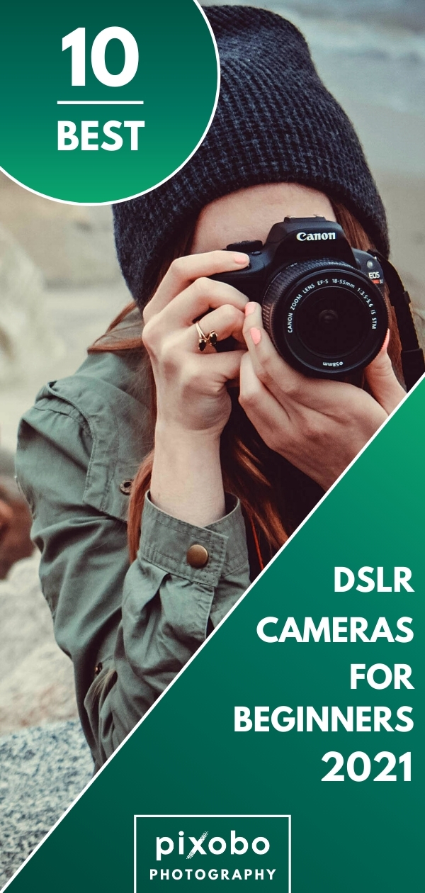 Best Entry-Level DSLR Cameras in 2021